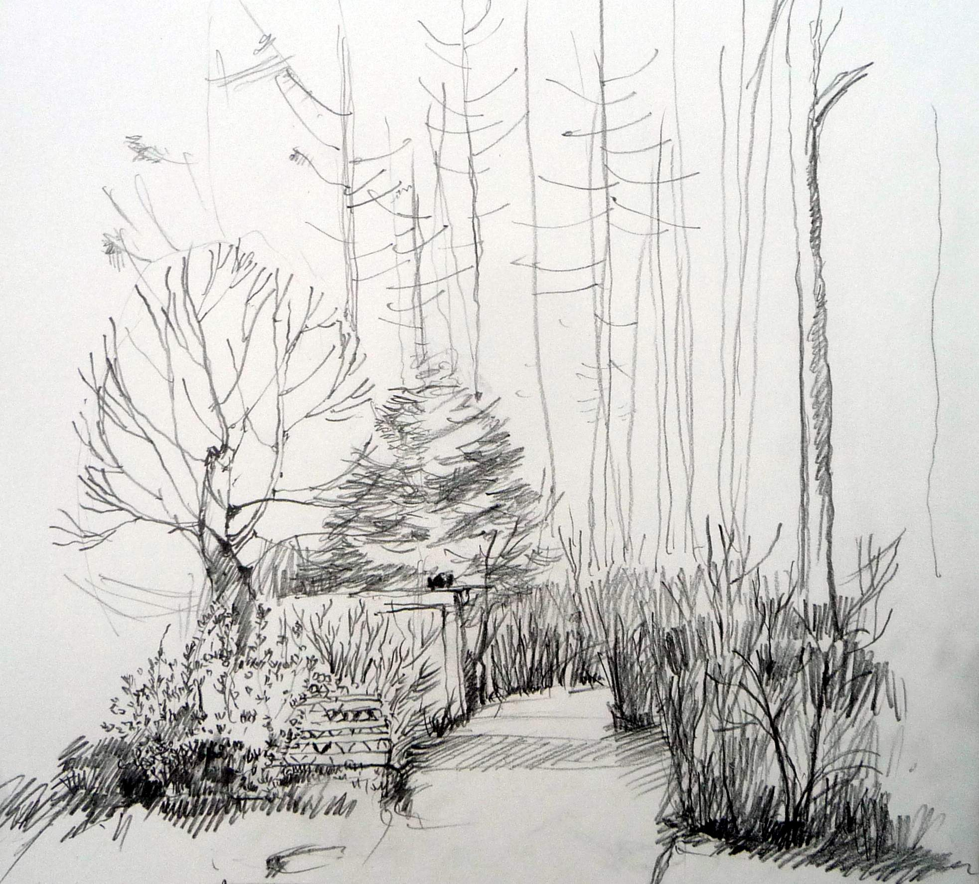 Zeichnen im wald arch blog - Architektur zeichnen ...